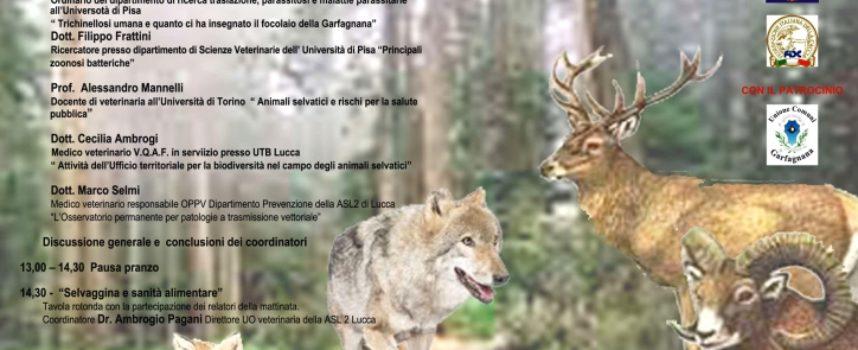 Quando la natura incontra l'uomo – Malattie della fauna selvatica e rischi per la salute umana