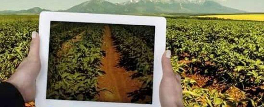 Con i piedi nella terra e il tablet in mano: da grande voglio fare l'imprenditore agricolo