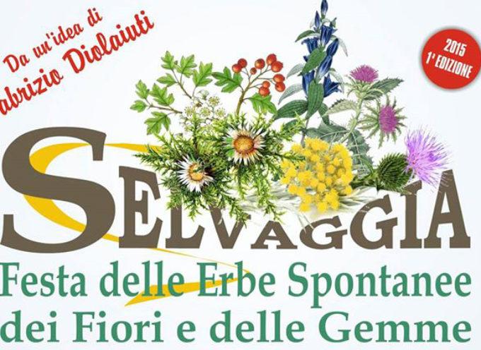 torna a Castelnuovo di Garfagnana Selvaggia, Sabato 13 e Domenica 14 Aprile