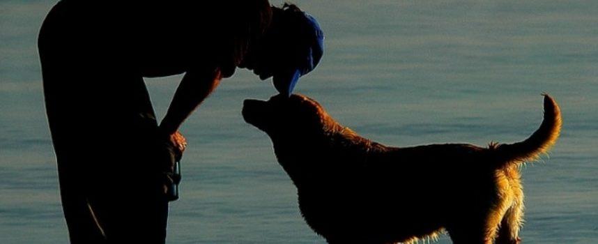 L'uomo e il cane, un apologo sul desiderio del cane ma anche dell'uomo