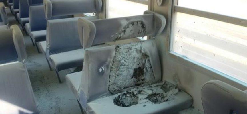 Fantoni tuona contro i vandali dei treni
