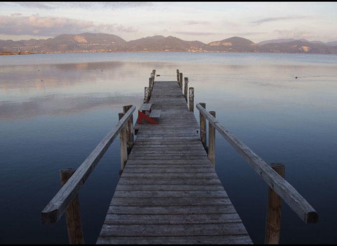 Pericolose biotossine algali nel Massaciuccoli, un lago che muore lentamente
