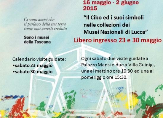 Amico Museo 2015: sabato 23 e 30 maggio libero ingresso e  visite guidate ai Musei nazionali di Lucca