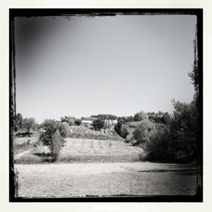 San Beda1