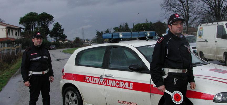 Scappa al posto di controllo, bloccato dalla polizia municipale di Altopascio