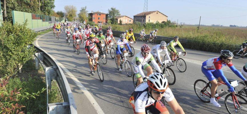 Domani la GranFondo ciclistica Mario Cipollini sulle strade del Campione lucchese