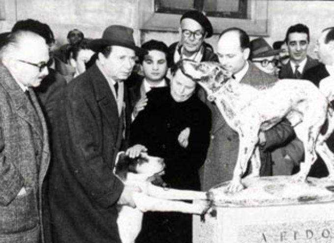 Accadde oggi, 9 Giugno: 1958, muore Fido, un animale che poteva insegnare all'uomo cos'è il vero amore!