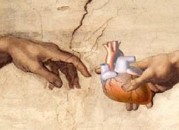Un'altra donazione di organi a Lucca
