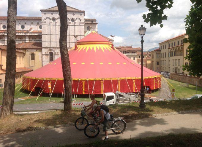 Dall'Associazione di Rete Tissue Italy 12 mila per il rifacimento dei vialetti in Piazzale Arrigoni!