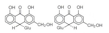 calcio e aminoacidi