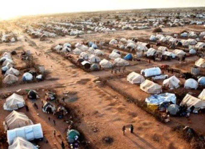 Martinelli Forza Italia: Tambellini non trasformi la città di Lucca in un campo profughi