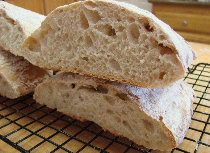 Viaggio alla scoperta del pane    1° puntata – La Lievitazione