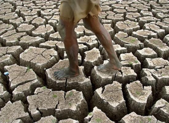Accadde oggi, 17 Giugno: Giornata Mondiale contro la desertificazione