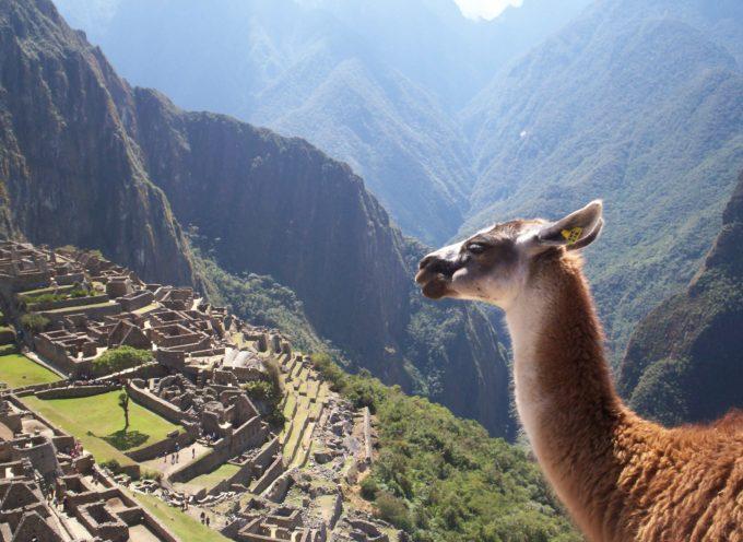 Accadde oggi, 24 luglio 1911: il mondo conosce Machu Picchu, la favolosa città degli Incas,
