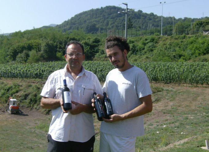 """Il vino garfagnino """"Polla"""" all'Expo: gustato anche dal Presidente della Regione Lombardia"""