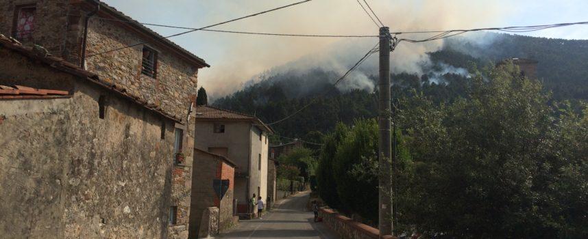 Vasto incendio nei boschi di S.Andrea di Compito