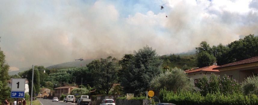 Ennesimo incendio alle pendici del Serra, distrutte le pinete sopra Massa Macinaia