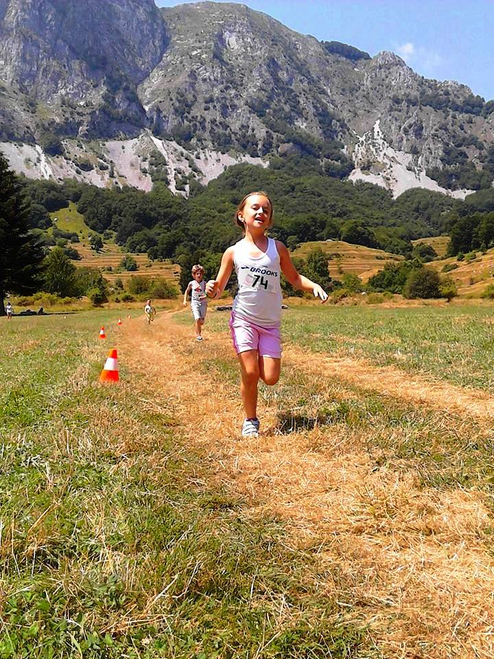 mini run -