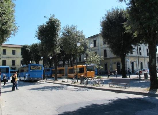 Arrivi bus: +51,8% rispetto al 2014!