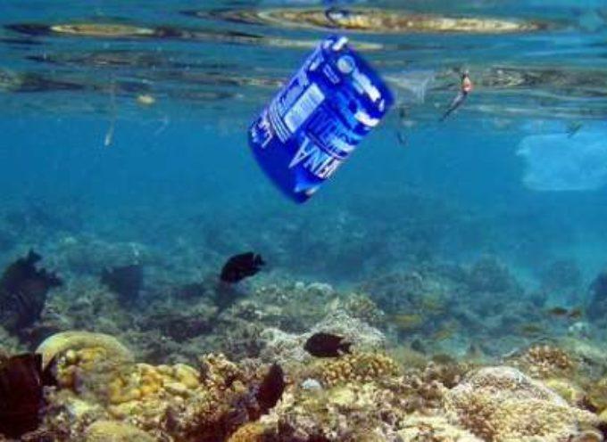 5.250 Miliardi di pezzi di plastica galleggiano sui nostri mari! Ma il peggio è la plastica sciolta che c'è sotto!   (2° puntata)