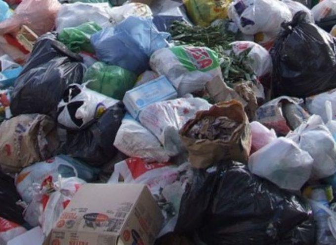 Sacchetti della spazzatura abbandonati in una zona residenziale di Porcari,