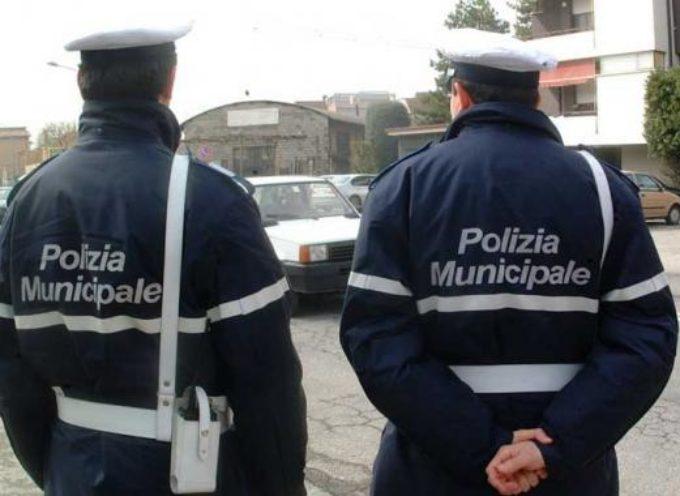 Incidente stradale con fuga: la Polizia Municipale rintraccia l'automobilista coinvolto