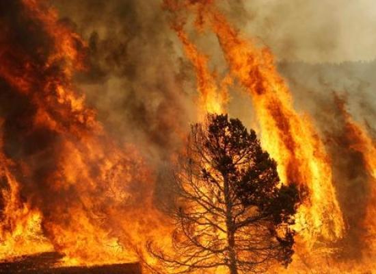 Incendio a CoregliaAntelminelli: minacciate una abitazione e alcune capanne