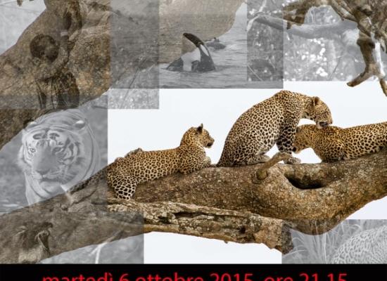 Nuovo importante appuntamento del Circolo Fotocine Garfagnana nella Sala Suffredini a Castelnuovo di Garfagnana