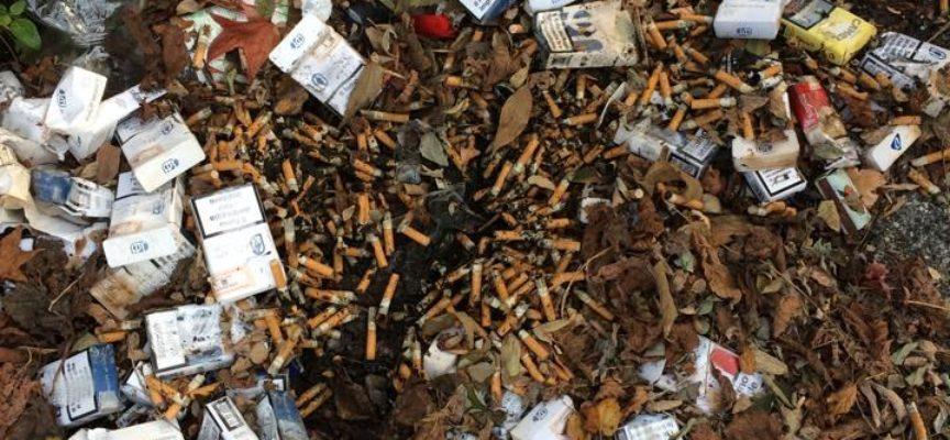 Quartiere Arancio: CasaPound Italia pulisce dai rifiuti la zona tra via Diaz e via Orzali
