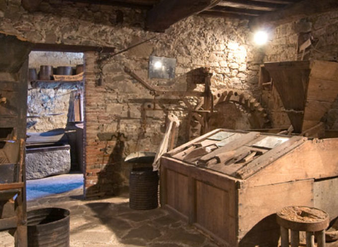Una escursione il ritorno del frutto del castagno nelle Selve e per il 30° del Museo del Castagno di Colognora