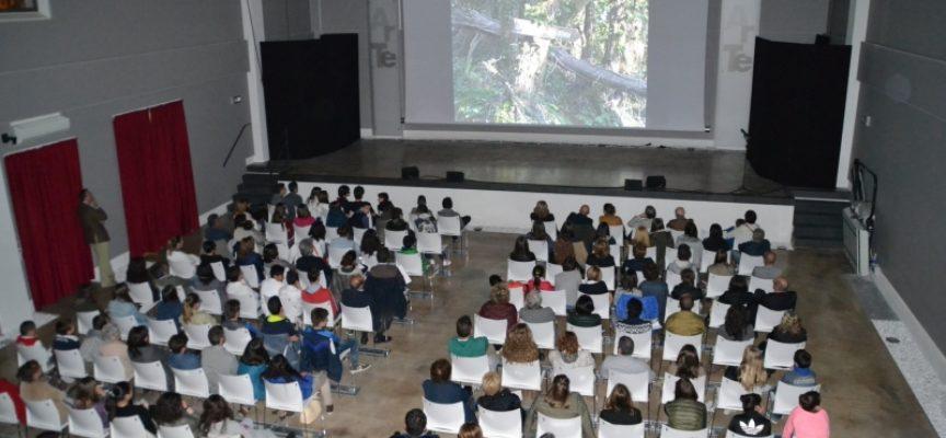 SABATO 21 RICOMINCIA IL CINEMA AD ARTE'