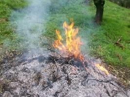 fuoco-sterpaglia