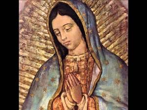 12 dic Guadalupe