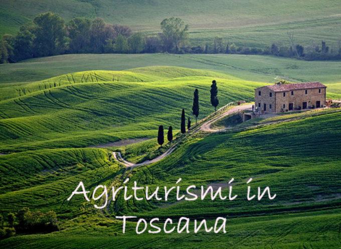 """""""AGRITURISMI E SAGRE, SERVONO PIU' CONTROLLI"""""""
