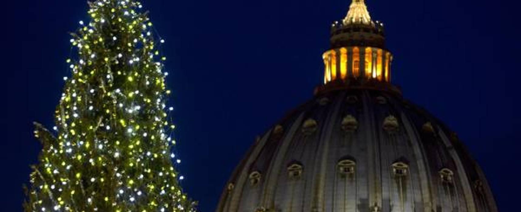 Origini pagane e cattoliche dell'albero di Natale
