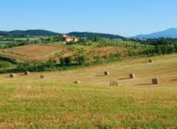 """Turismo: Agriturist Toscana """"A rischio un patrimonio di tradizioni, la Regione ci deve ascoltare"""""""