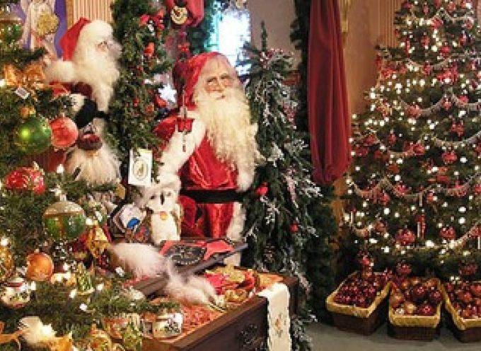 doppio immacolata e accensione luci natalizie