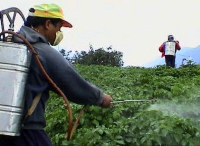 Borgo a Mozzano: un corso per l'utilizzo e/o l'acquisto di prodotti fitosanitari