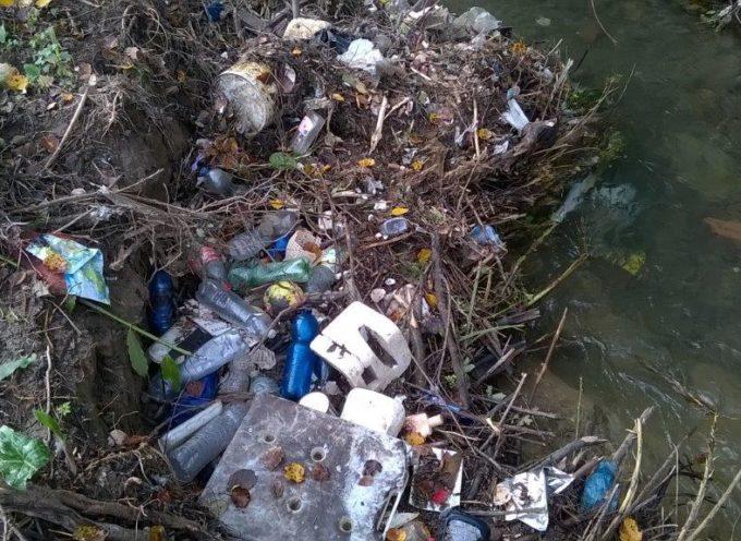 Intervento del Consorzio su due rii Capannoresi: via i sacchi di rifiuti e segnalato un presunto abuso alle autorità