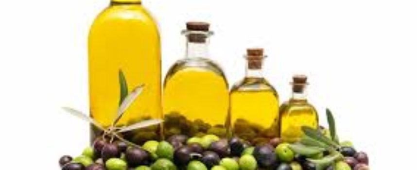 L'Ue ci impone l'olio tunisino: lo schiaffo ai nostri agricoltori