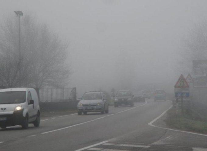 """Smog, Baccelli (Pd): """"Necessari progetti su larga scala. Toscana non è all'anno zero"""""""