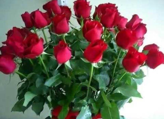 SAN VALENTINO: RINUNCIARE ALLE ROSE ROSSE, PER FARE UN REGALO ANCHE ALL'AMBIENTE