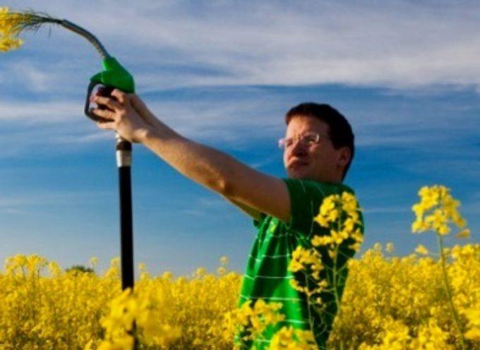 Quali scenari di utilizzo per il biometano? Se ne parla a Biometano Day, il 3 marzo, a Tortona (AL)