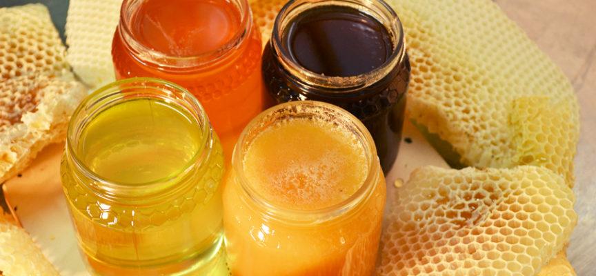 Miele: proprietà, benefici e quale scegliere
