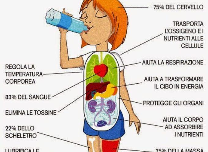 Ecco perché devi bere l'acqua a stomaco vuoto subito dopo esserti svegliato
