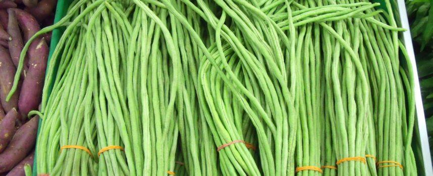 Alla (ri)scoperta dei prodotti tipici. La stringa lucchese: sapore delicato per ricette semplici e genuine