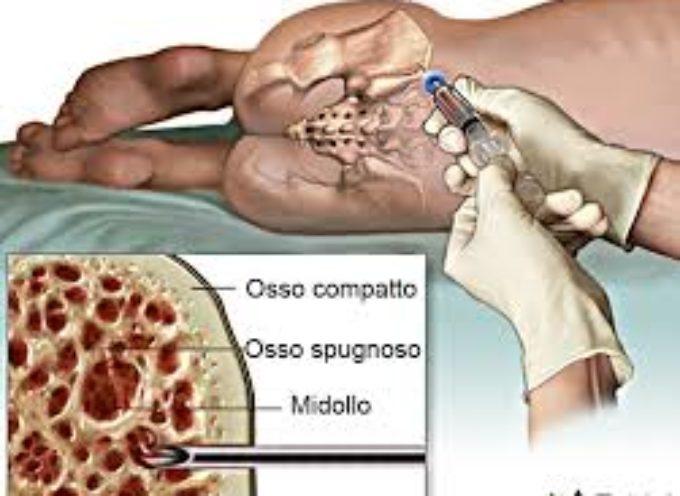 Lesioni midollo spinale curate con le staminali,. Un'equipe dell'università della California ha ripristinato il circuito nervoso dei topi