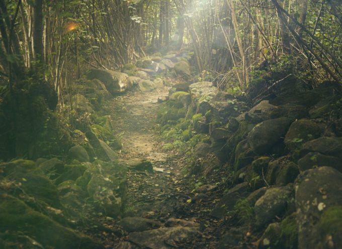 Grazie all'amore per il territorio di un cittadino gli antichi sentieri di Fosciandora tornano agibili