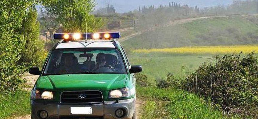 CAPANNORI, Blitz in un terreno, la Forestale sequestra una discarica abusiva
