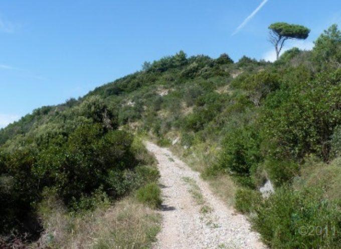 3 Aprile escursione Apuantrek Passo di dante e Eremo della Spelonca